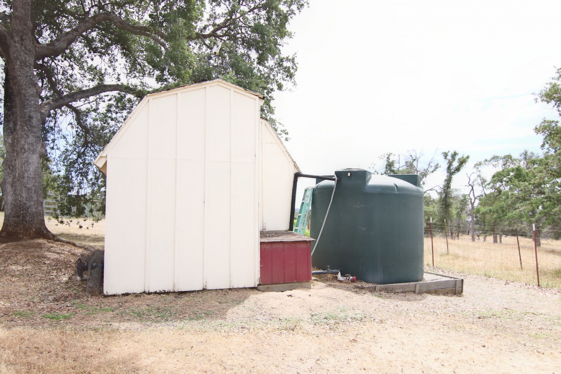 Water-Tank-and-Shed