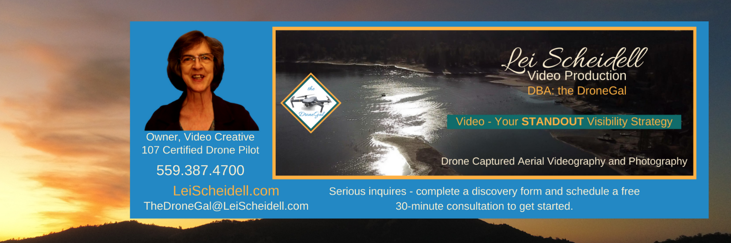 Lei Scheidell Video Production - DBA: the DroneGal